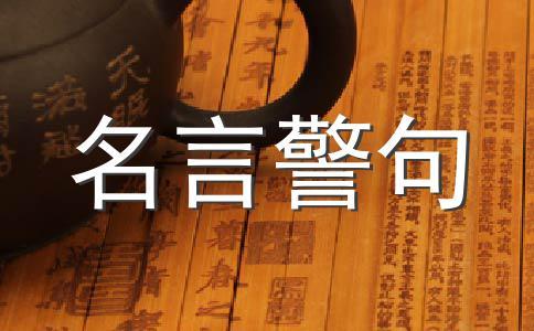 安妮宝贝经典语录(三)