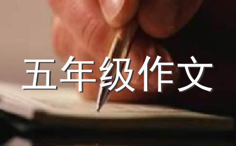 漂亮的鸵鸟笔