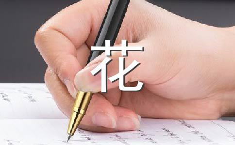 菊花200字作文