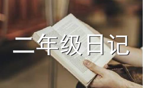 数学日记200字作文